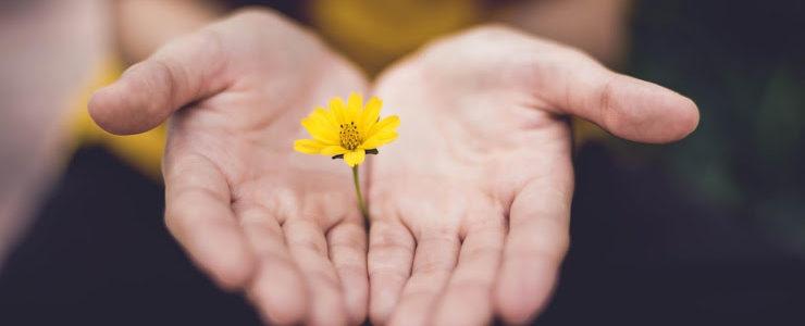6 maneiras de aplicar o consumo consciente e tornar sua vida mais sustentável
